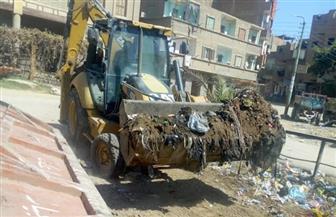 رفع 11 طن قمامة ومخلفات صلبة من الشوارع بدائرة مركز سوهاج |صور