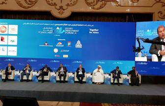 حنفي: المستثمرون العرب والأجانب يتابعون الإصلاحات الاقتصادية في مصر