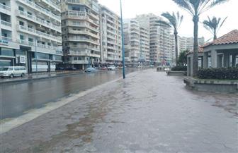 أمطار غزيرة ورياح يضربان الإسكندرية.. وتوقف الملاحة البحرية بالميناء| صور