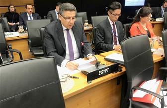 مصر تلقى بيانا باجتماعات محافظى الوكالة الدولية للطاقة الذرية نيابة عن مجموعة الـ77