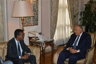 وزير الخارجية يؤكد أهمية دعم استقرار وأمن الصومال