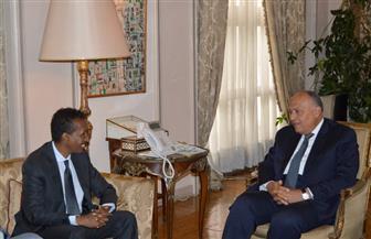 وزير الخارجية خلال لقائه نظيره الصومالي: مصر تدعم أمن واستقرار الصومال | صور