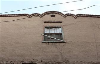 لماذا تندثر بيوت الطين في ريف مصر؟ دراسة تطالب بالحفاظ على سمات القرية المعمارية | صور