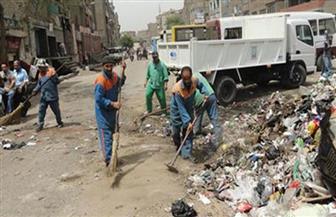 رفع 22 طن مخلفات وقمامة بمركز ملوى
