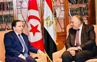 لقاء ثنائي لوزيري خارجية مصر وتونس.. غدا