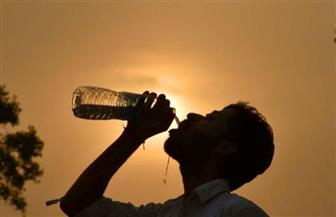 الصيف الأشد حرا في أستراليا يحطم أكثر من 200 رقم قياسي