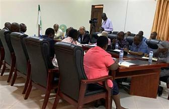 مندوب مصر بالاتحاد الإفريقي يشارك بزيارة مجلس السلم والأمن إلى جنوب إفريقيا | صور
