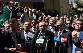 أبوشقة: ثورة 19 مازالت محل تفسير وتحليل لكثير من المؤرخين حول العالم