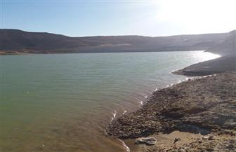 """""""الري"""": سد وادي دجلة يحمي المنطقة من الغرق"""