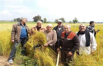 «الزراعة» تصدر نشرة بالتوصيات الفنية لمزارعي محصول الكتان لمراعاتها خلال شهر أكتوبر