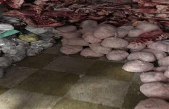 ضبط كمية من اللحوم المذبوحة خارج السلخانة بمركز أجا | صور