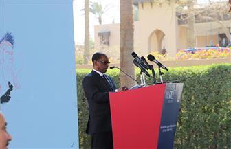 موسى أومارو: مصر تلعب دورا مهما في العالم العربي وإفريقيا والعالم