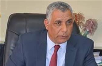 """رئيس هيئة حماية الشواطئ: مشروعات """"الري"""" في جنوب سيناء حافظت على منشآت تتجاوز قيمتها 300 مليار جنيه"""