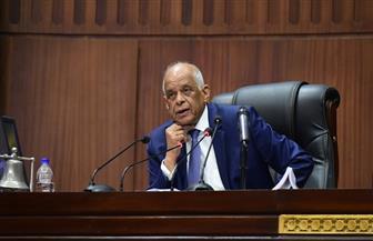 """""""تشريعية النواب"""" توافق على آليات اختيار رئيس المحكمة الدستورية وصلاحيات مجلس الدولة"""