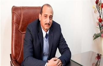خبير: المحاصيل الزيتية أمن قومى لمصر يجب دعمها من قبل الحكومة