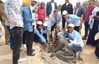 رئيس جامعة سوهاج يشارك في زراعة 200 شجرة ليمون داخل الحرم الجامعي الجديد | صور