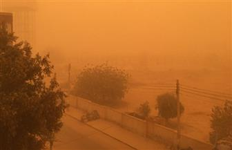 """منذ 90 سنة.. هذه قصة ناطحات الأرض لمقاومة الغبار والطقس السيئ في قرية """"باريس"""" المصرية   صور"""