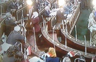 نواب البرلمان يحملون أعلام مصر تزامنا مع جلسة التصويت النهائي على التعديلات الدستورية
