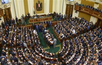 """""""النواب"""" يوافق نهائيا على التمثيل الملائم لـ""""الفئات"""" بالمجالس النيابية"""