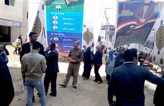 إقبال كبير من الصيادلة بكفرالشيخ على لجان الانتخابات في الساعات الأخيرة | صور