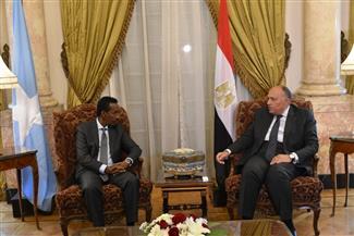 خلال استقباله نظيره الصومالي: وزير الخارجية يؤكد دعم مصر لاستقرار الأوضاع في الصومال   صور