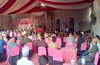 مؤتمر جماهيري بجنوب الجيزة لدعم التعديلات الدستورية صور