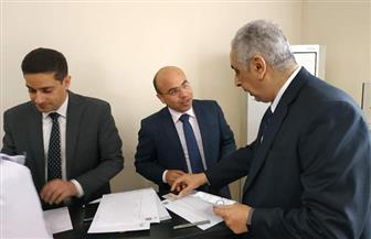 المصريون بالصين: المشاركة في الاستفتاء واجب وطني للمساهمة في رسم مستقبل مصر | صور