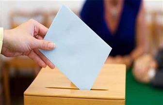 """""""انزل أي لجنة"""".. 12 نقطة عن تصويت الوافدين في الاستفتاء"""