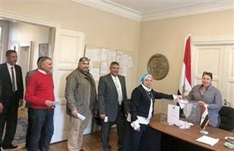 المصريون يدلون بأصواتهم في الاستفتاء على التعديلات الدستورية بالنرويج   صور