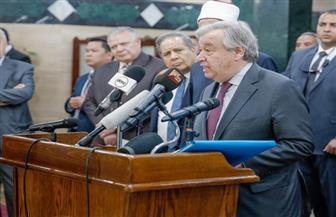 """""""الإمام الطيب"""" يطلب اعتماد مجلس حكماء المسلمين عضوا مراقبا في الأمم المتحدة"""