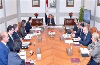 الرئيس السيسي يوجه بتكوين قاعدة صناعية تلبي احتياجات السوق المحلية وتعظيم الصادرات