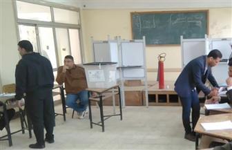 تأخر فتح لجنتين بالمنوفية وانتظام باقي اللجان الانتخابية