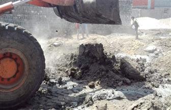 إزالة 5 حالات تعد على الأراضي الزراعية بكفرالشيخ