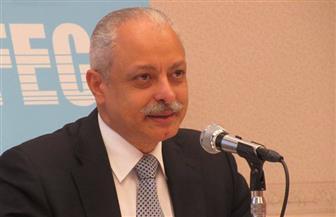سفير مصر في طوكيو يلقى محاضرة عن العلاقات المصرية اليابانية بالمجلس الدولى للصداقة | صور