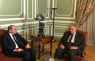 """وزير الخارجية يلتقي نظيره الأردني عقب اجتماع """"الجامعة العربية""""   صور"""