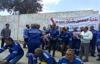 عمال المنطقة الصناعية بالسادات يحتشدون أمام لجان الاستفتاء | صور