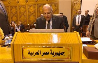 وزير الخارجية يؤكد استمرار مصر في دعم الحقوق المشروعة للشعب الفلسطيني