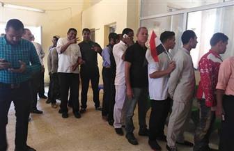 استمرار توافد المواطنين على لجان عزبة النخل