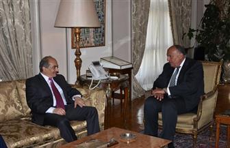 وزير الخارجية يستقبل رئيس مجلس النواب القبرصي| صور