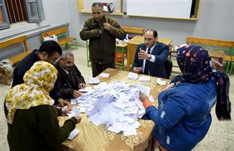 الأغاني الوطنية تصدح في ميدان التحرير احتفالا بنتيجة الاستفتاء على التعديلات الدستورية | فيديو