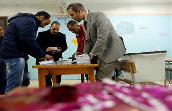 الأعلام المصرية ترفرف في ميدان عابدين احتفالا بنتيجة الاستفتاء على التعديلات الدستورية| فيديو