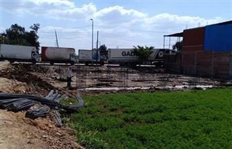 إزالة 6 حالات من التعديات على الأراضي الزراعية بكفرالشيخ| صور