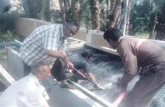 غسل وتطهير مرشح الظهير الصحراوي بالقبلي قمولا بالأقصر | صور
