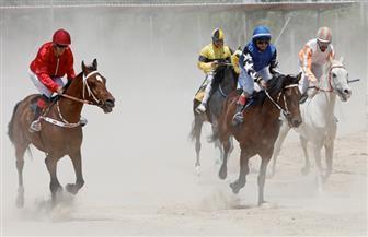 فرسان فلسطينيون يتنافسون في سباق خيول بالضفة الغربية | صور