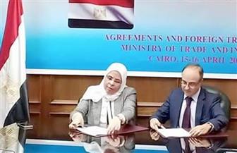 تشكيل مجموعات عمل لدراسة جدوى إبرام اتفاق تجارة حرة بين مصر وشيلي