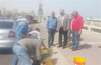 سكرتير عام الإسكندرية يكلف الأحياء برفع حالة الطواريء | صور
