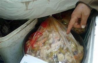 ضبط 1.38 طن لحوم وأسماك فاسدة داخل مخزن تجهيز وجبات بالقليوبية
