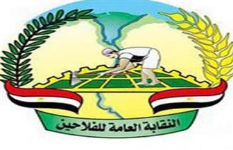 نقابة الفلاحين تنشر قرار سحب الثقة من النقيب السابق عماد أبوحسين