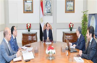 الرئيس يوجه بالانتهاء من تنفيذ المشروعات الجديدة للطاقة الكهربائية ومواصلة جهود تنفيذها مع دول الجوار