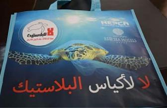 محافظة البحر الأحمر تبدأ تطبيق تجربة الأكياس البديلة للبلاستيك